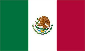 mexican flag 2